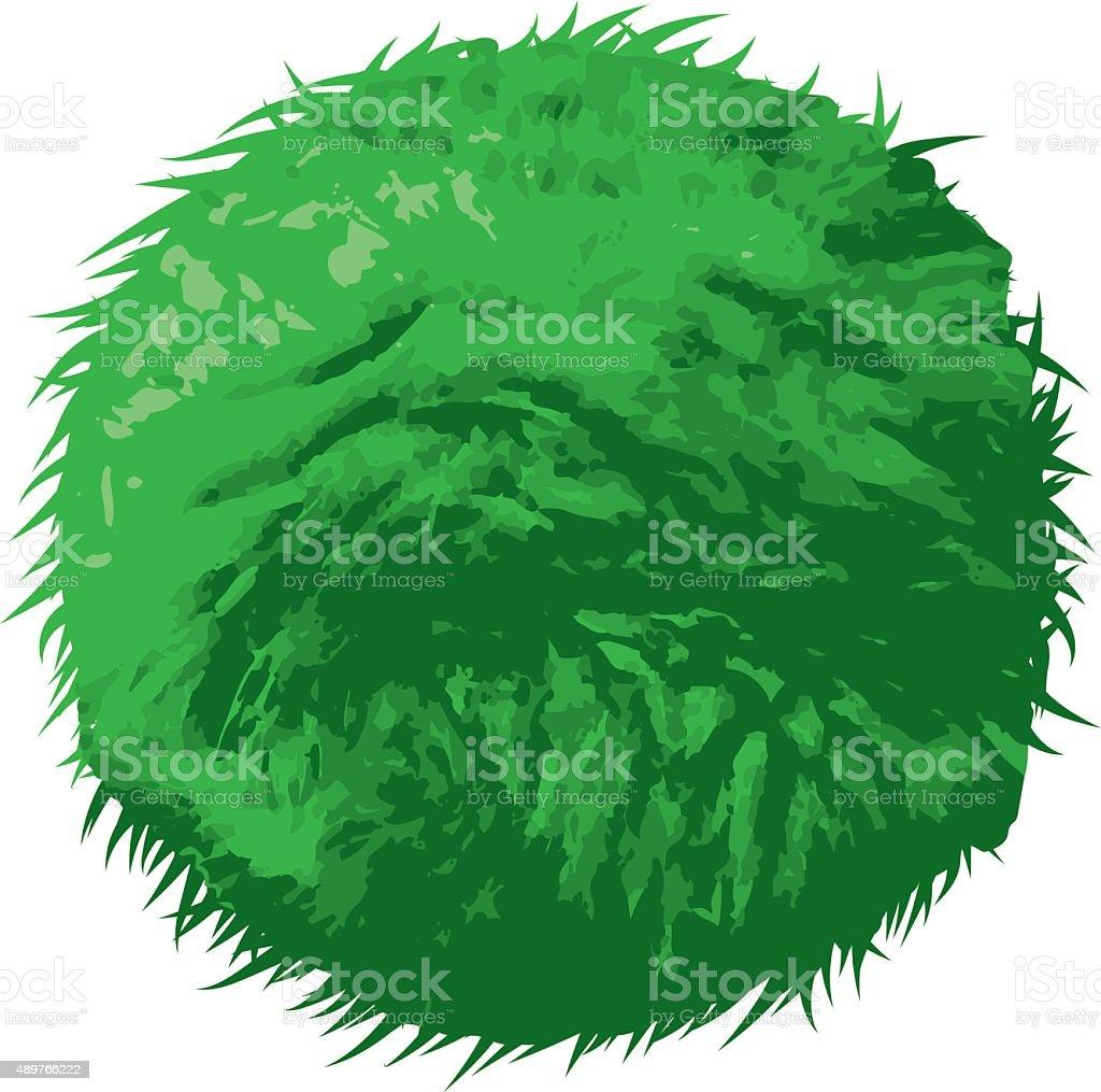 Marimo (Aegagropila linnaei), Japanese Seaweed Ball vector art illustration