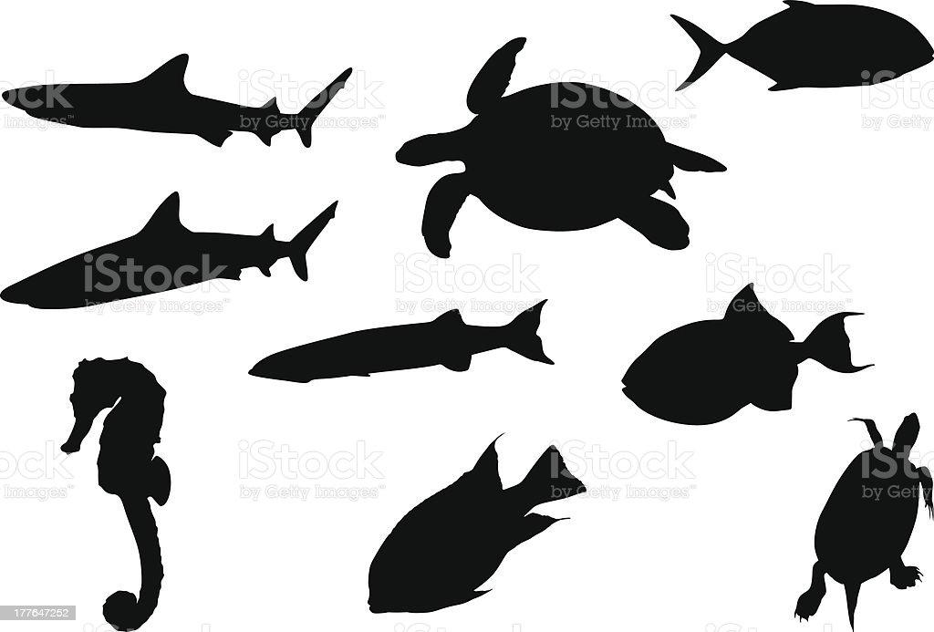 Marine animals royalty-free stock vector art