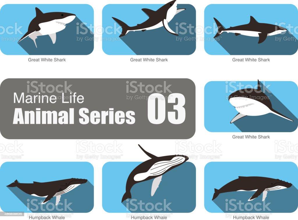 Marine life cartoon collection, vector vector art illustration