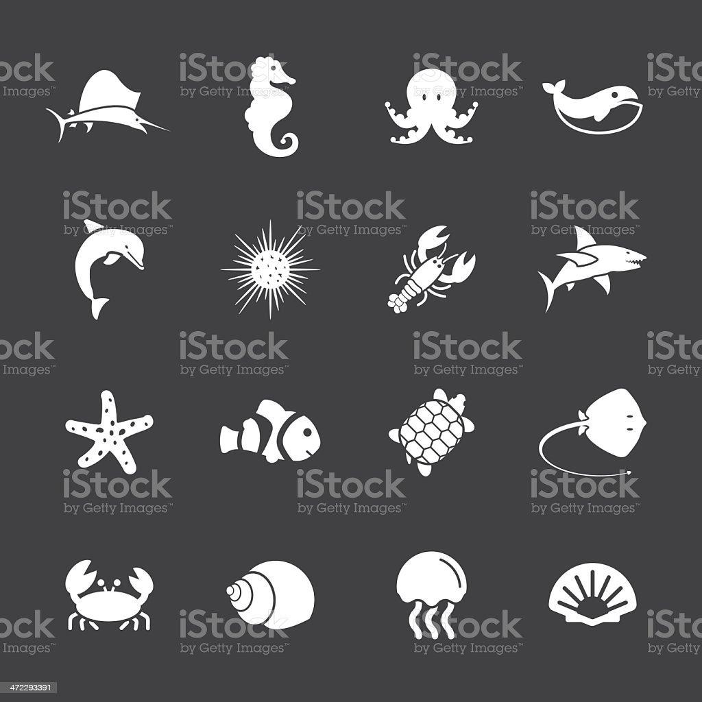 Marine Life Icons - White Series | EPS10 vector art illustration