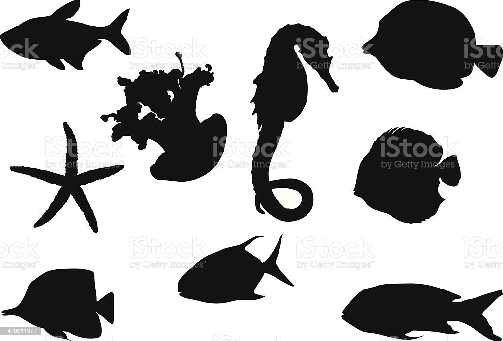 Marine life royalty-free stock vector art