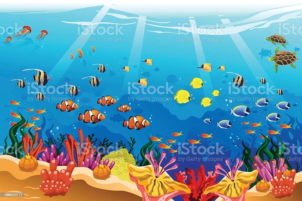 Marine underwater scene vector art illustration