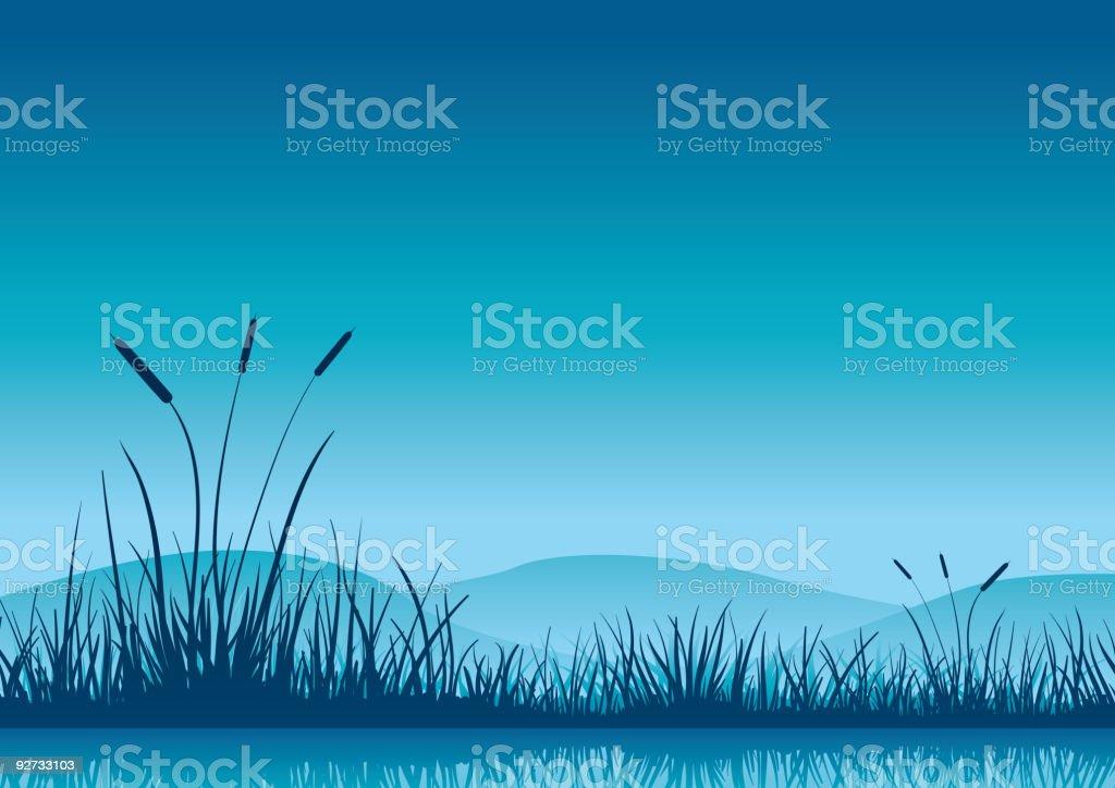 Marshland early morning. royalty-free stock vector art