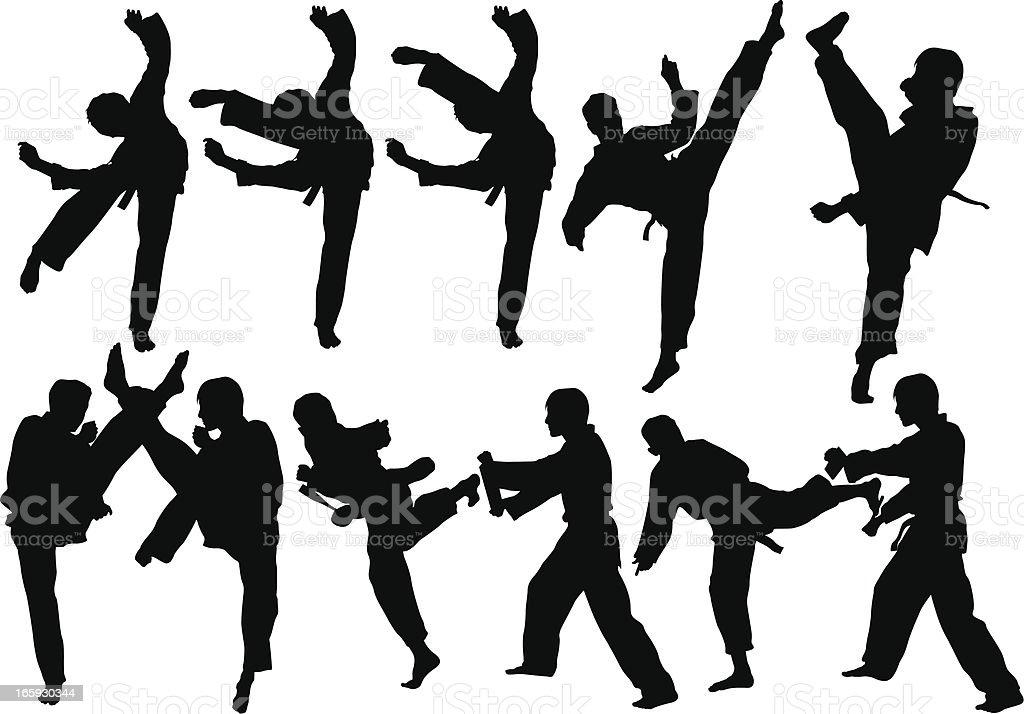 Martial art vector art illustration