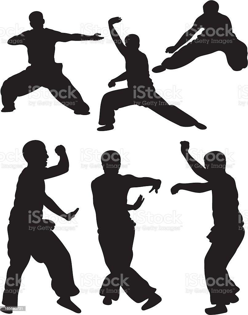 Martial Arts Silhouette vector art illustration