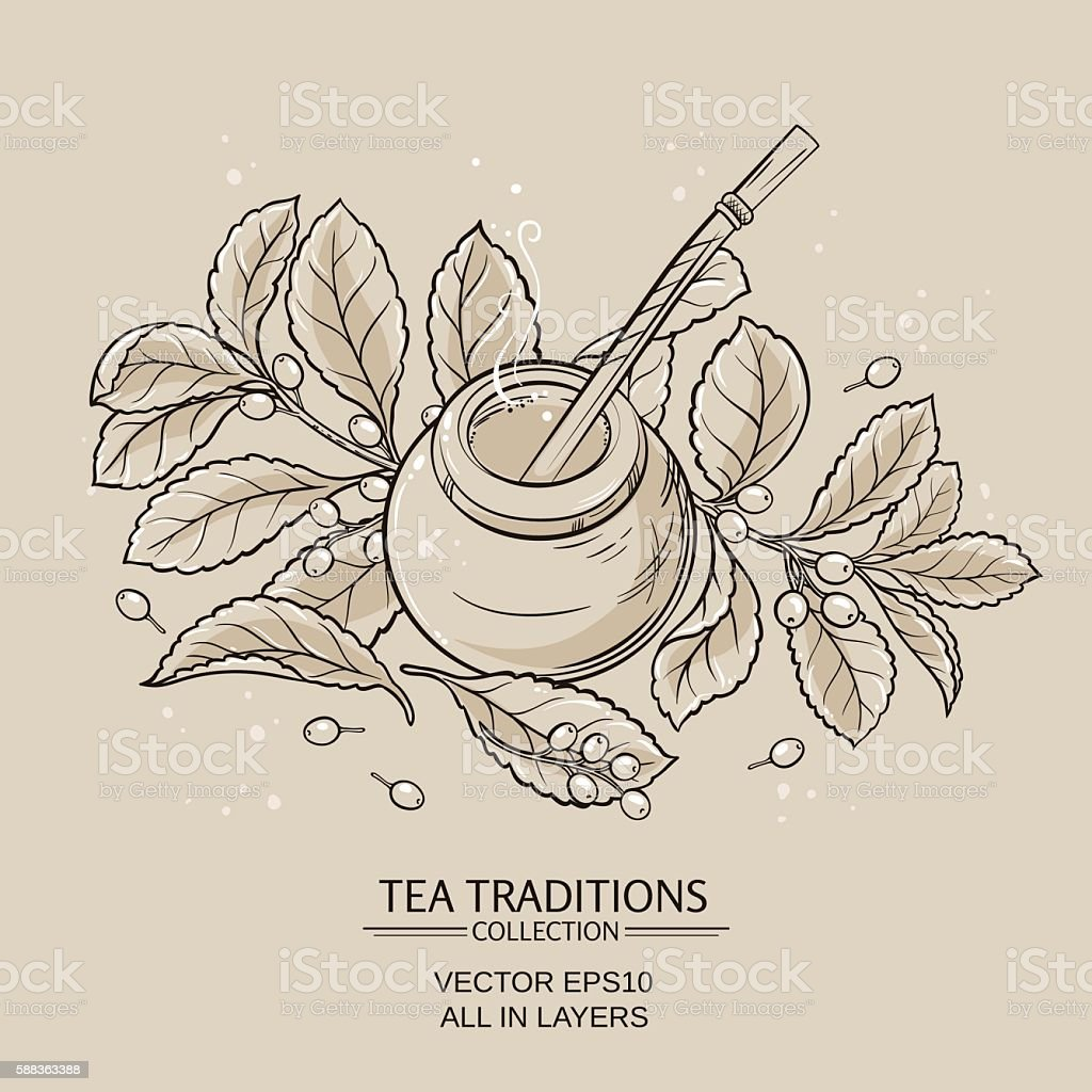 mate tea in calabash and bombilla and 'yerba mate' plant vector art illustration