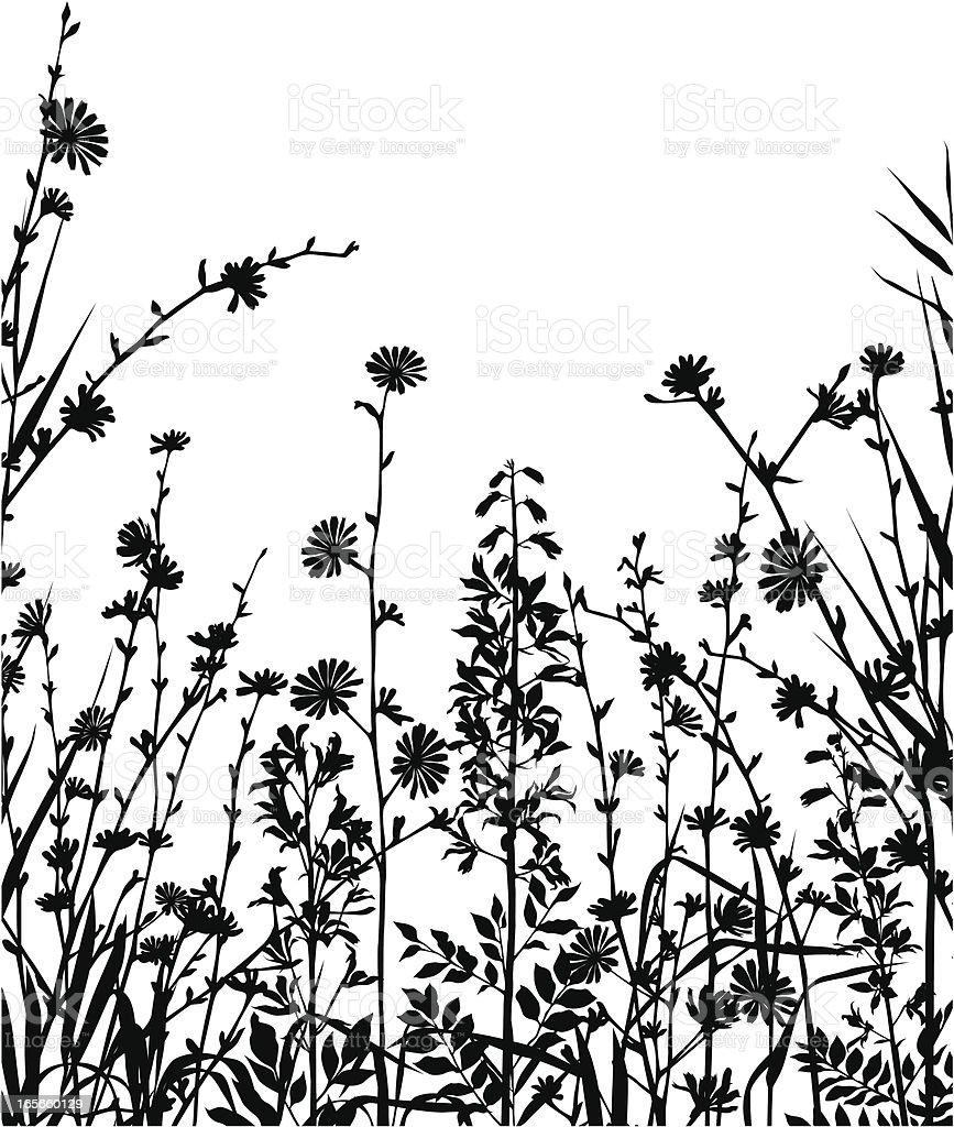 Meadow composition vector art illustration