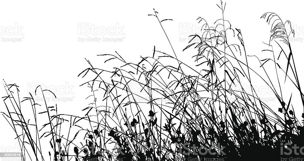 Meadow Grass Silhouette vector art illustration