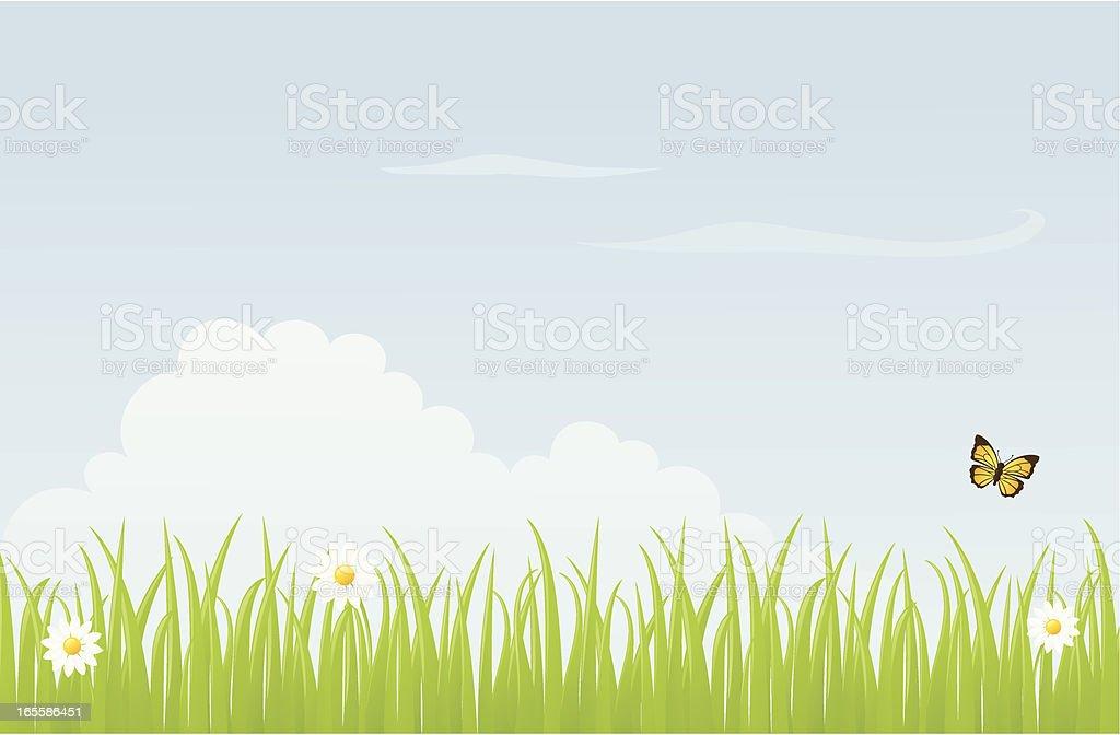 Meadow - incl. jpeg vector art illustration