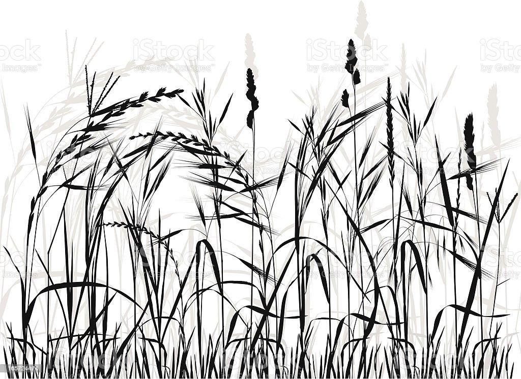 Meadow Silhouette vector art illustration
