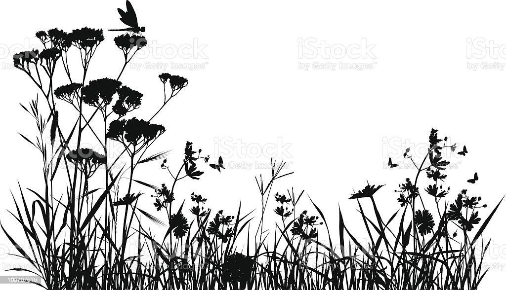 Meadow Silhouette stock vector art 165767515  iStock