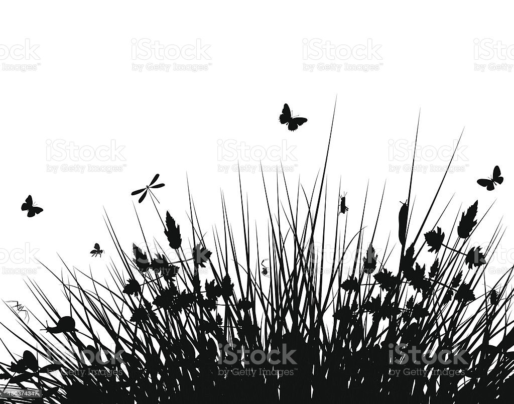 A meadow silhouette with butterflies in black and white royalty-free stock vector art