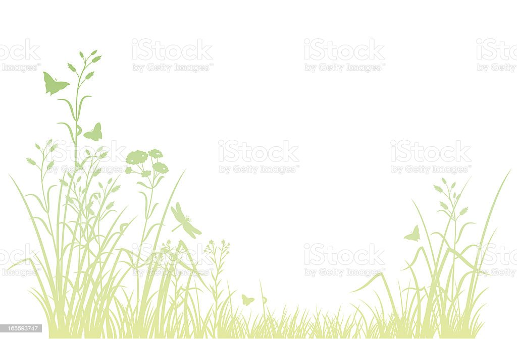 Meadow vector art illustration