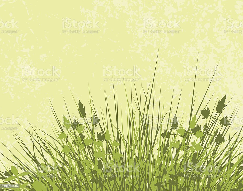 Meadowy royalty-free stock vector art