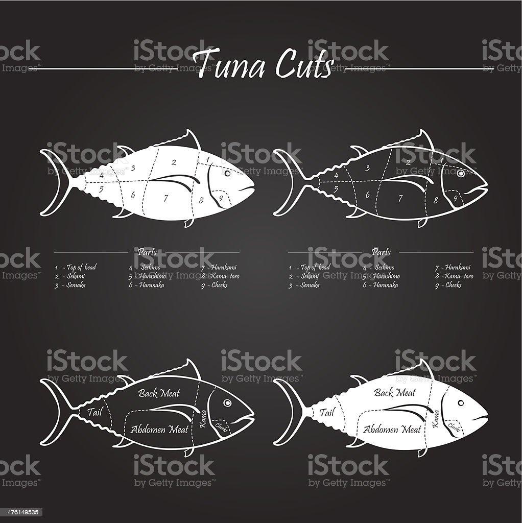 TUNA meat cuts scheme vector art illustration