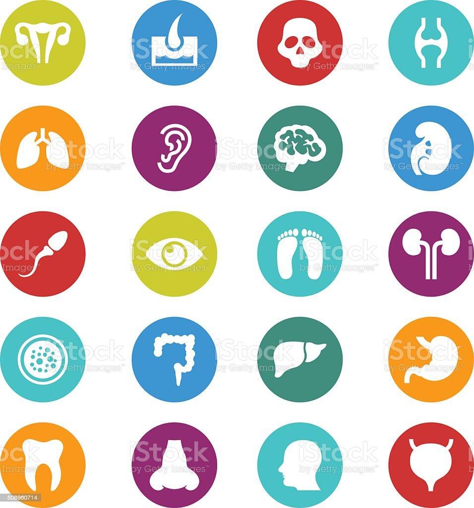 Medical icon set vector art illustration
