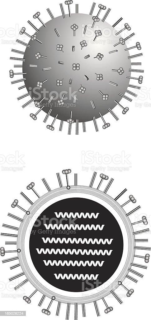 Medical Illustration of the influenza (flu) virus vector art illustration