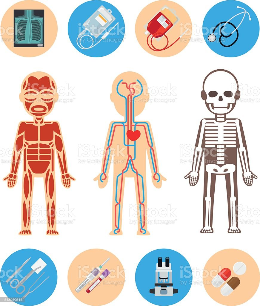 Medical infographics elements vector art illustration