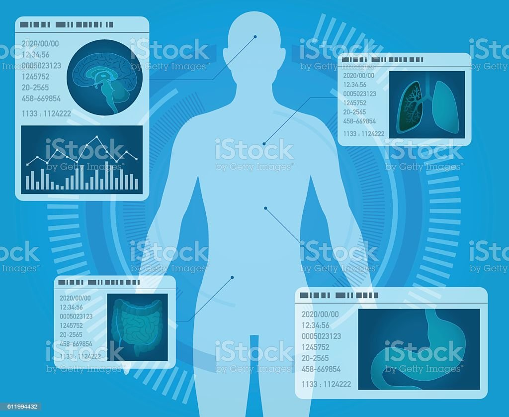 medical interface, human digestive organs vector art illustration