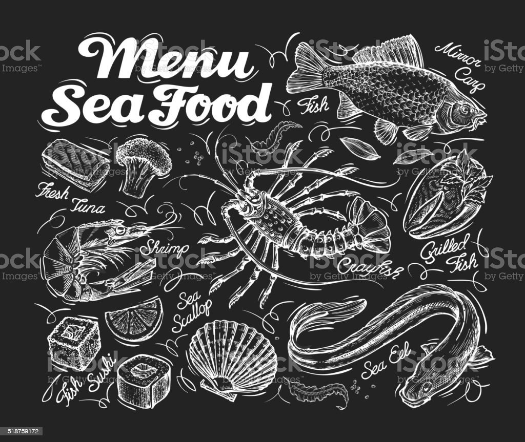 Menu seafood. Hand drawn fish carp, sea eel, scallops, shrimp vector art illustration