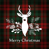 Merry Christmas greeting card. Reindeer and tartan checkered plaid, vector.