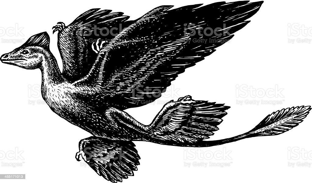 Microraptor vector art illustration