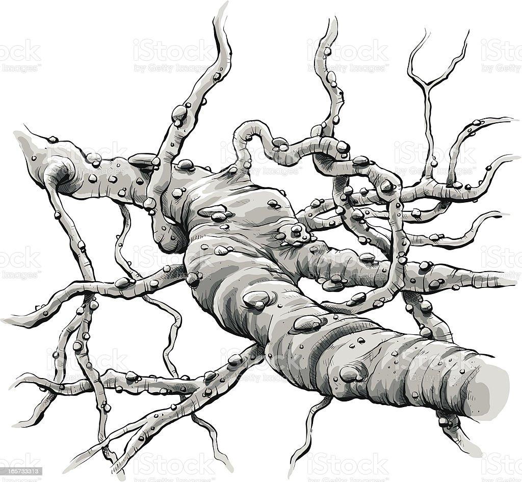 Microscopic Fibre royalty-free stock vector art