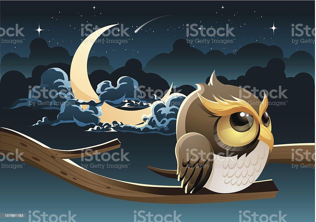 Midnight lonely owl vector art illustration