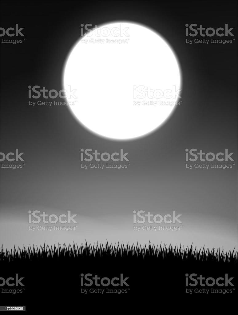 Midnight on meadow vector art illustration