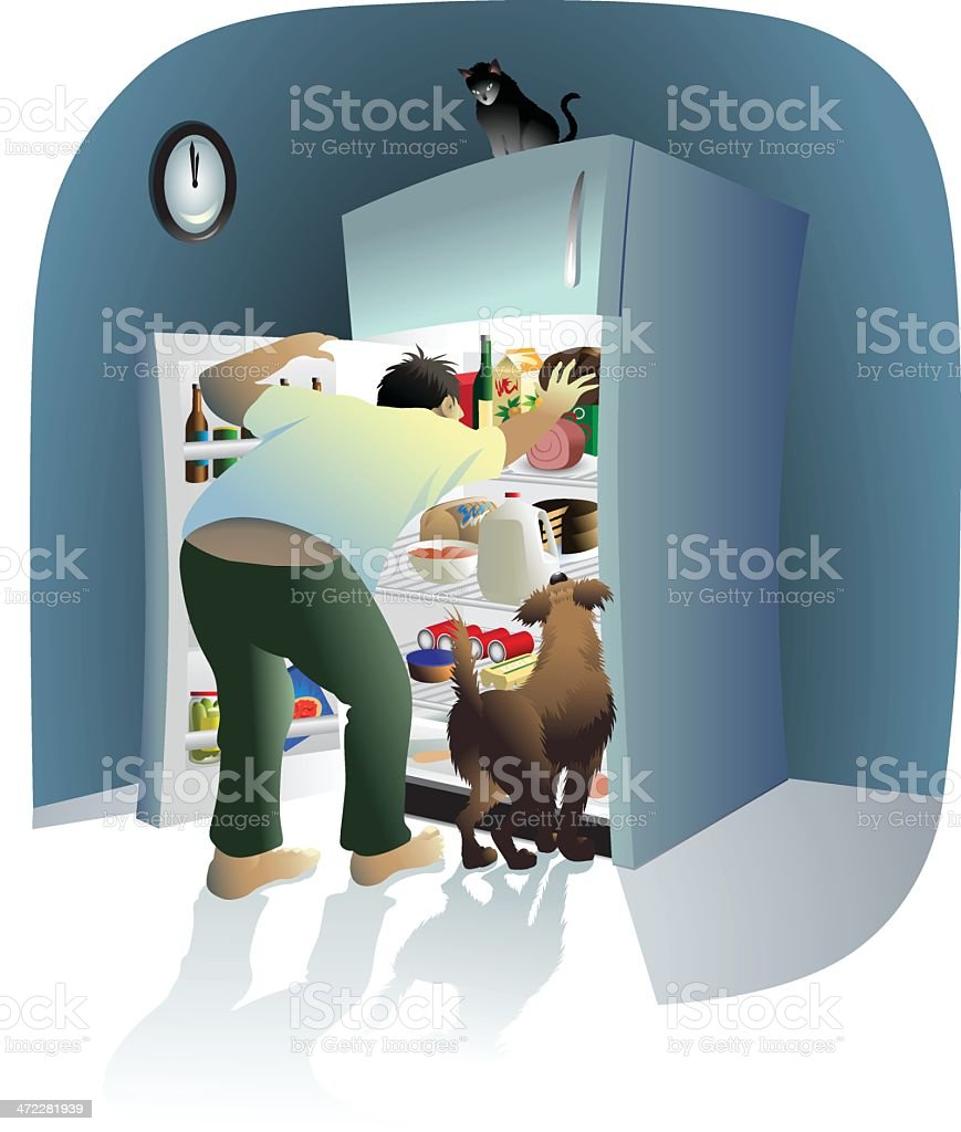 Midnight Refrigerator Raiders vector art illustration