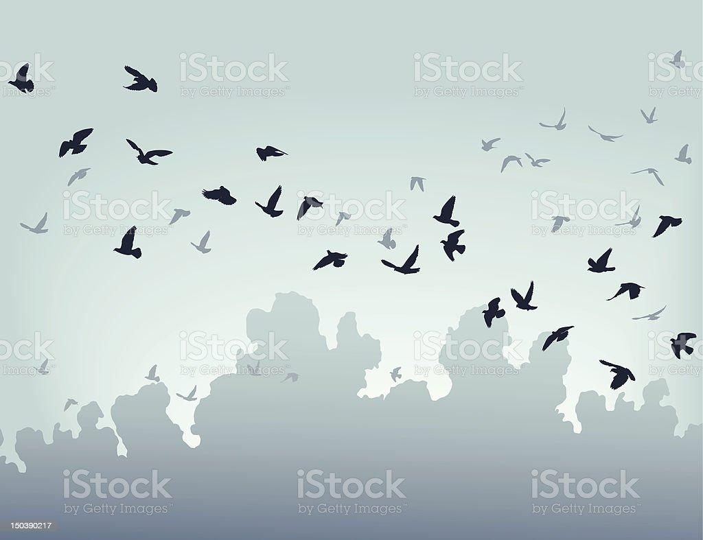 Migration vector art illustration