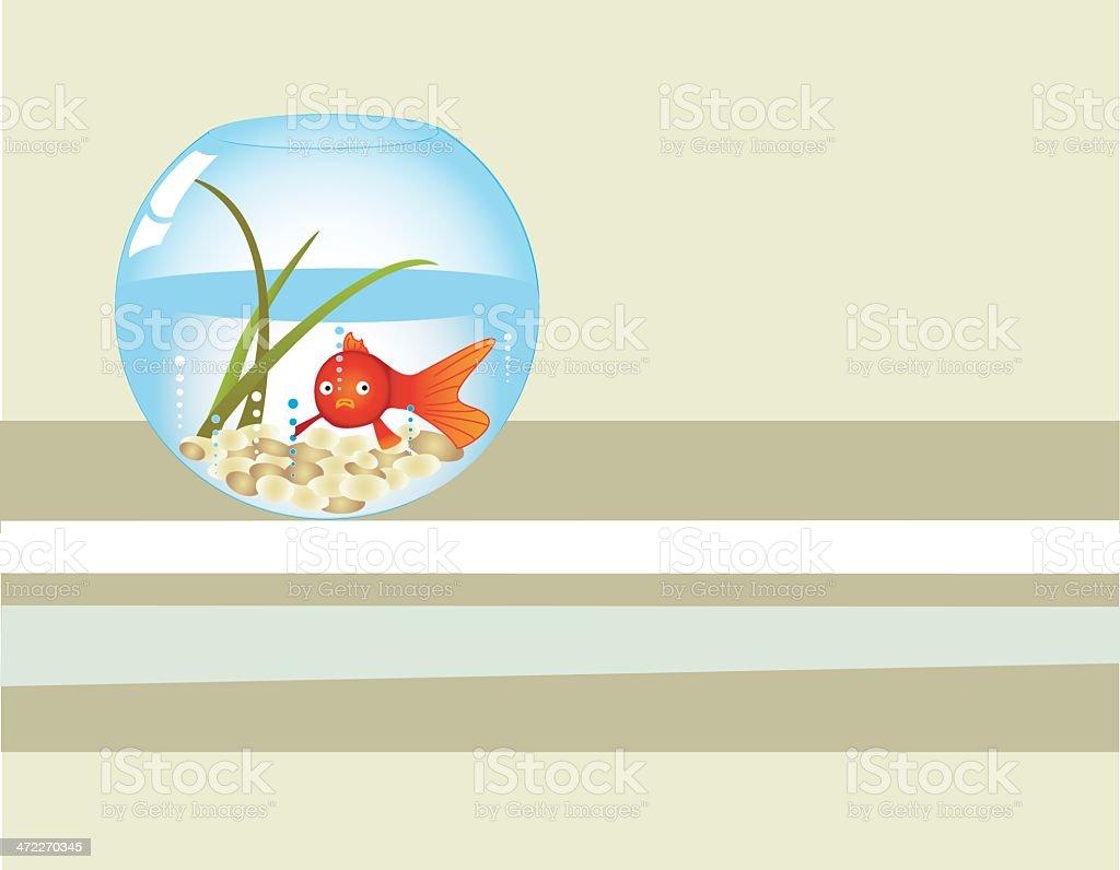 Minimalist  Aquarium royalty-free stock vector art
