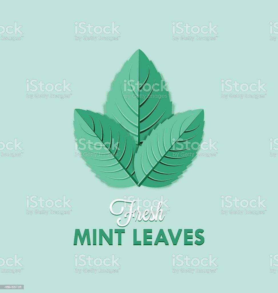 Mint leaves vector art illustration