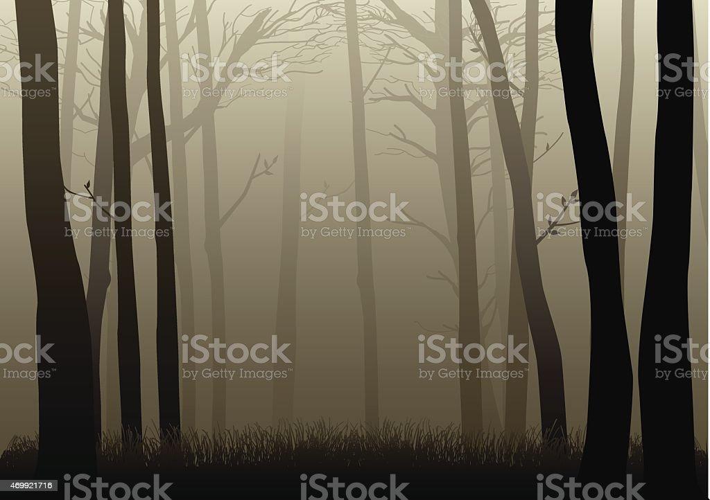 Misty Woods vector art illustration