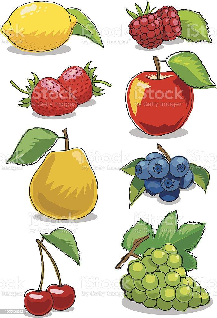 Mixed Fruit royalty-free stock vector art