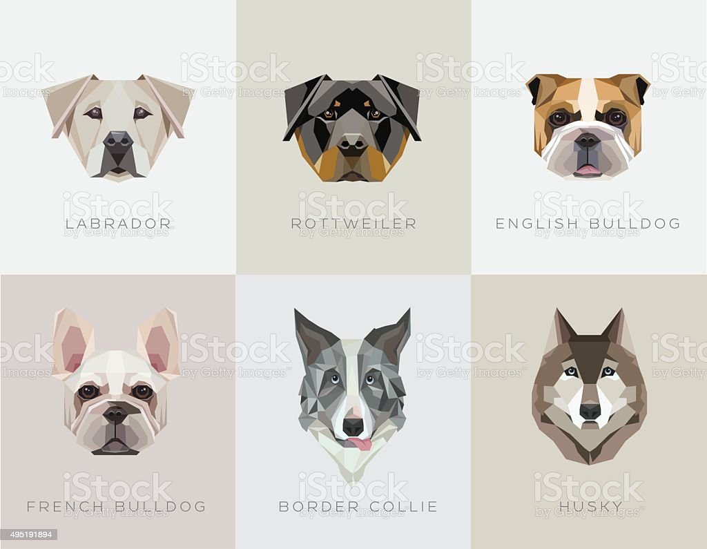 Modern contemporary geometric dog breeds vector illustrations vector art illustration