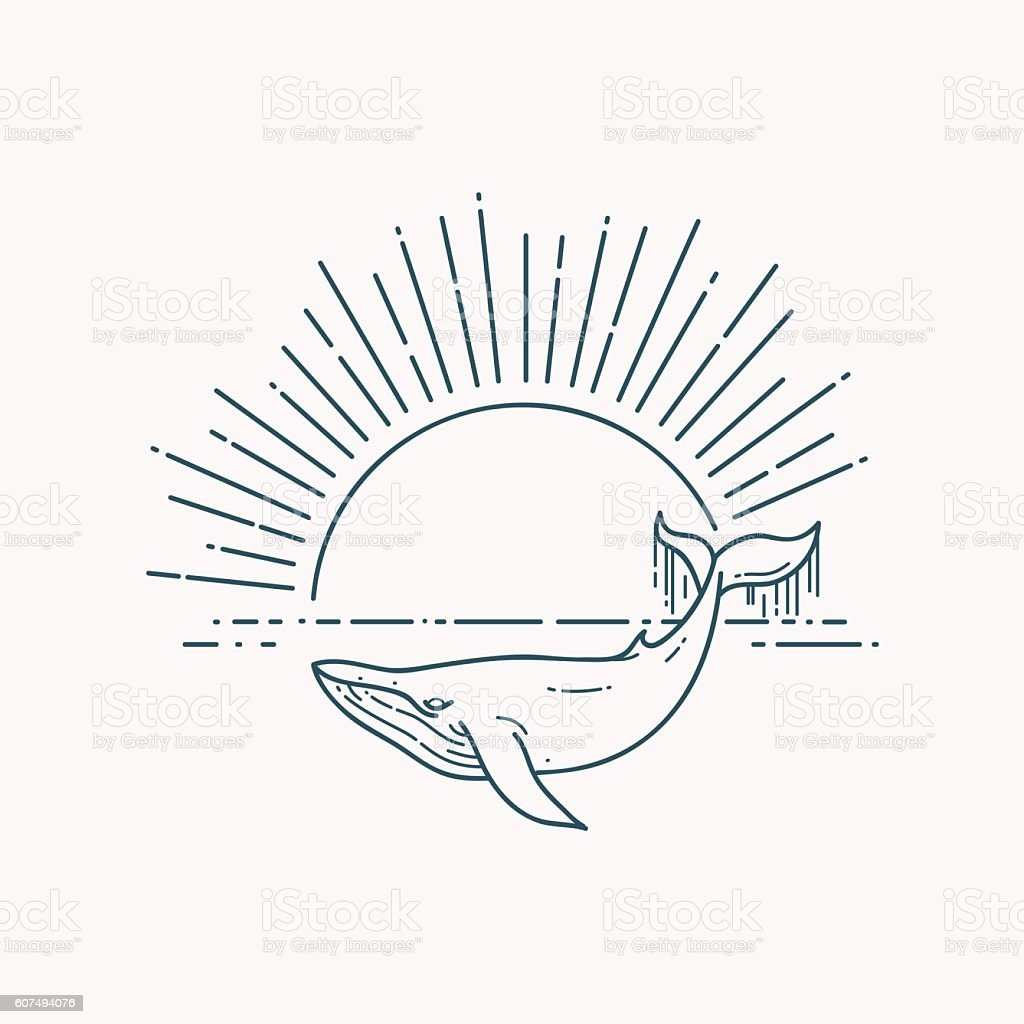 Modern flat linear vector illustration with Whale and sunrise vector art illustration