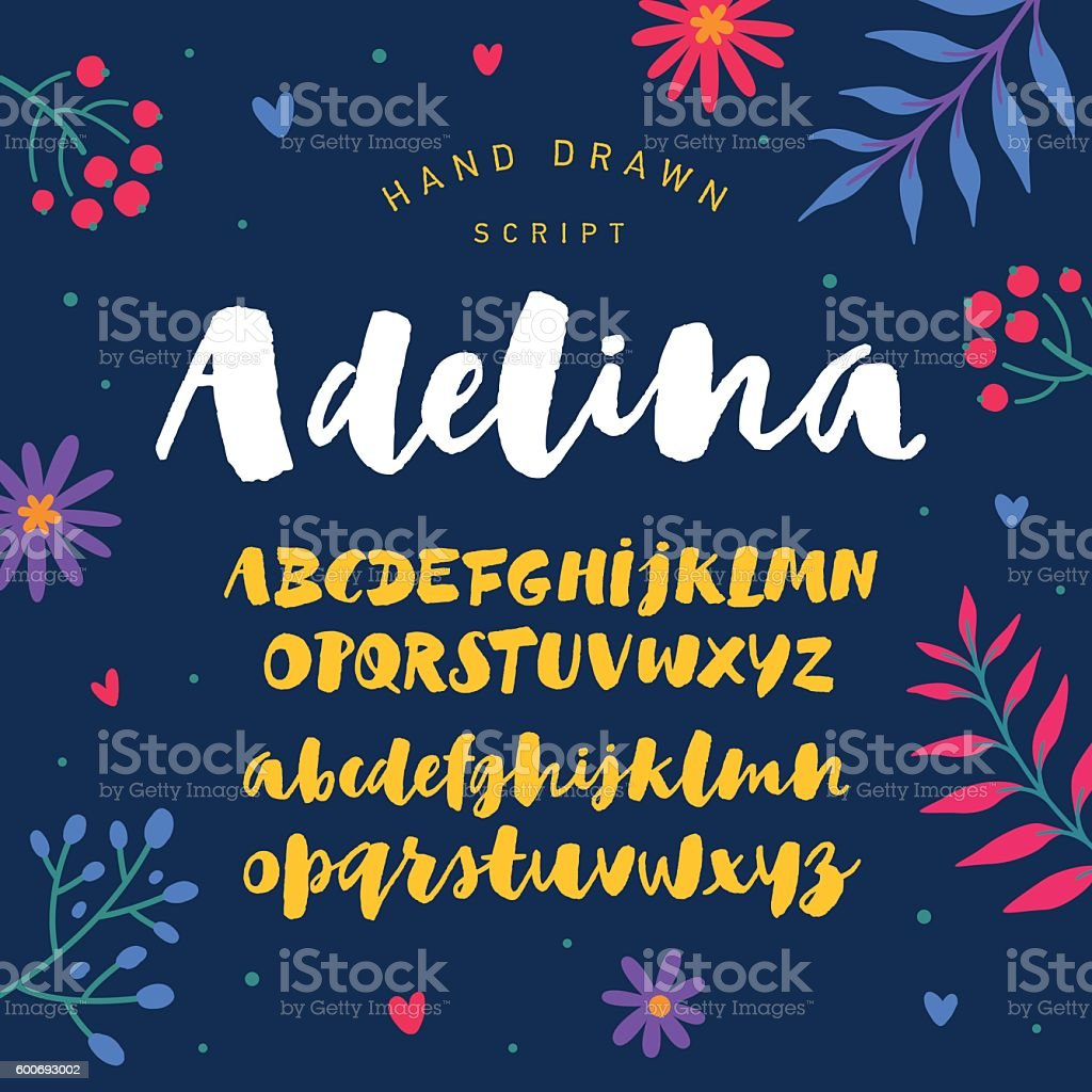 Modern hand drawn calligraphy script painted by soft brush vector art illustration