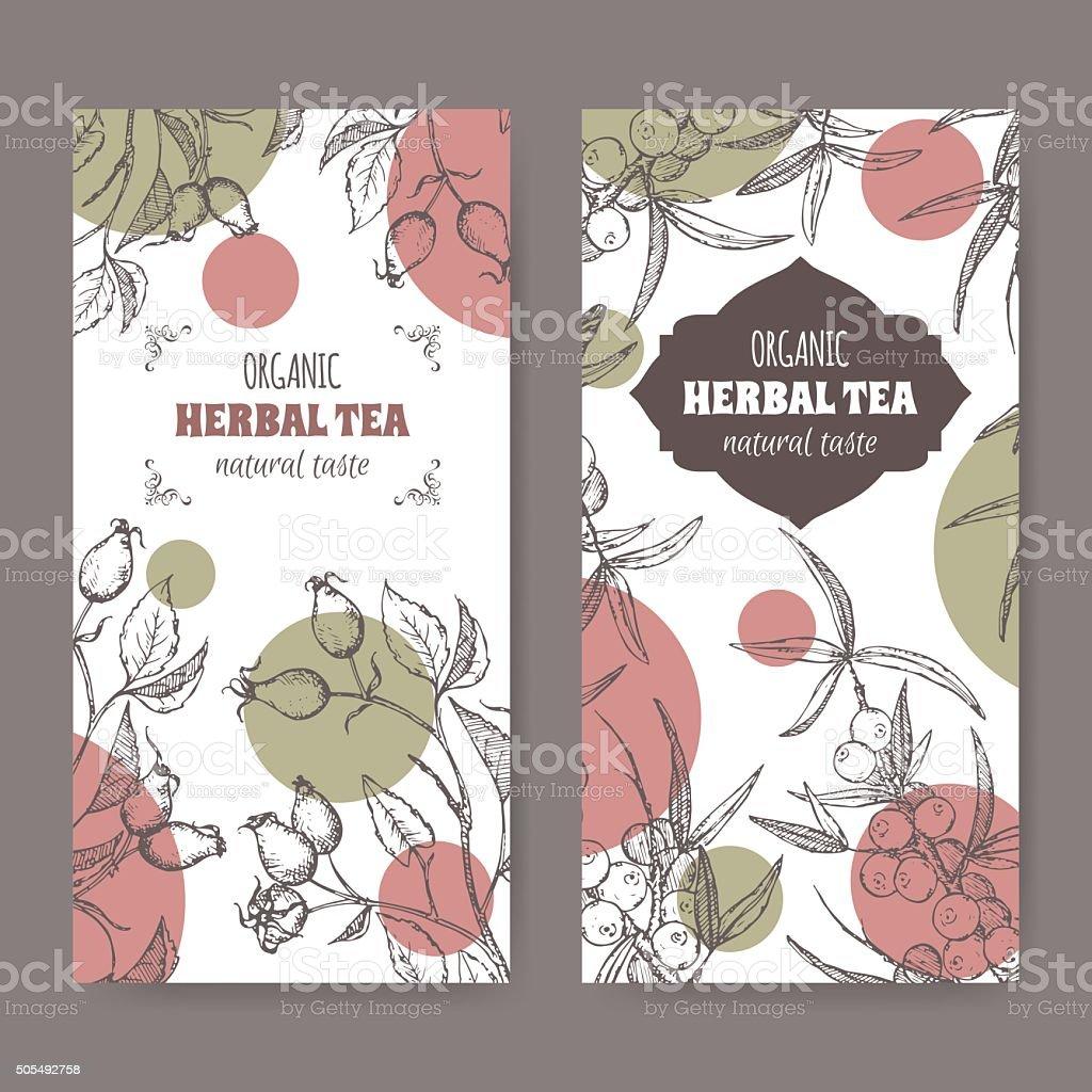2 modern labels for dog rose and sea buckthorn tea. vector art illustration