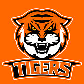 Modern professional logo for sport team. Tiger mascot. Tigers, vector