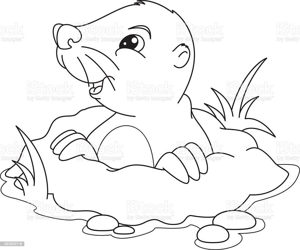 mole coloring page stock vector art 591820116 istock