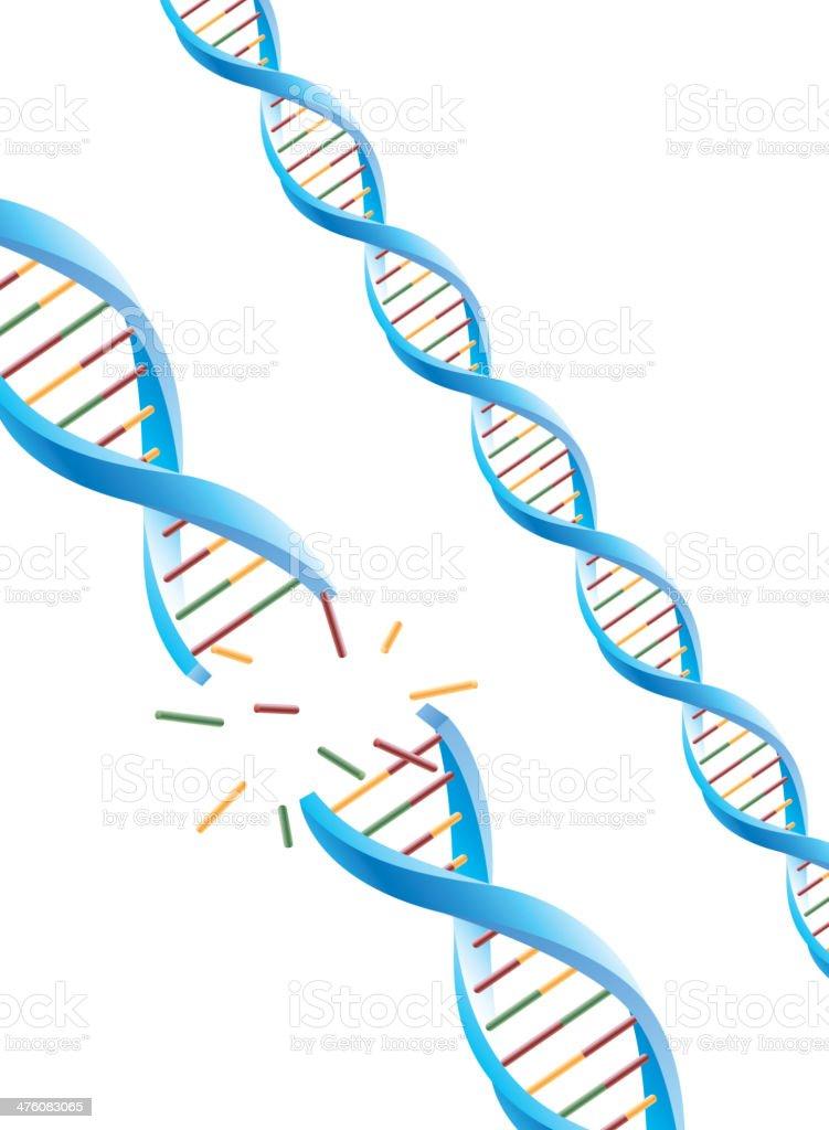 DNA molecular vector art illustration