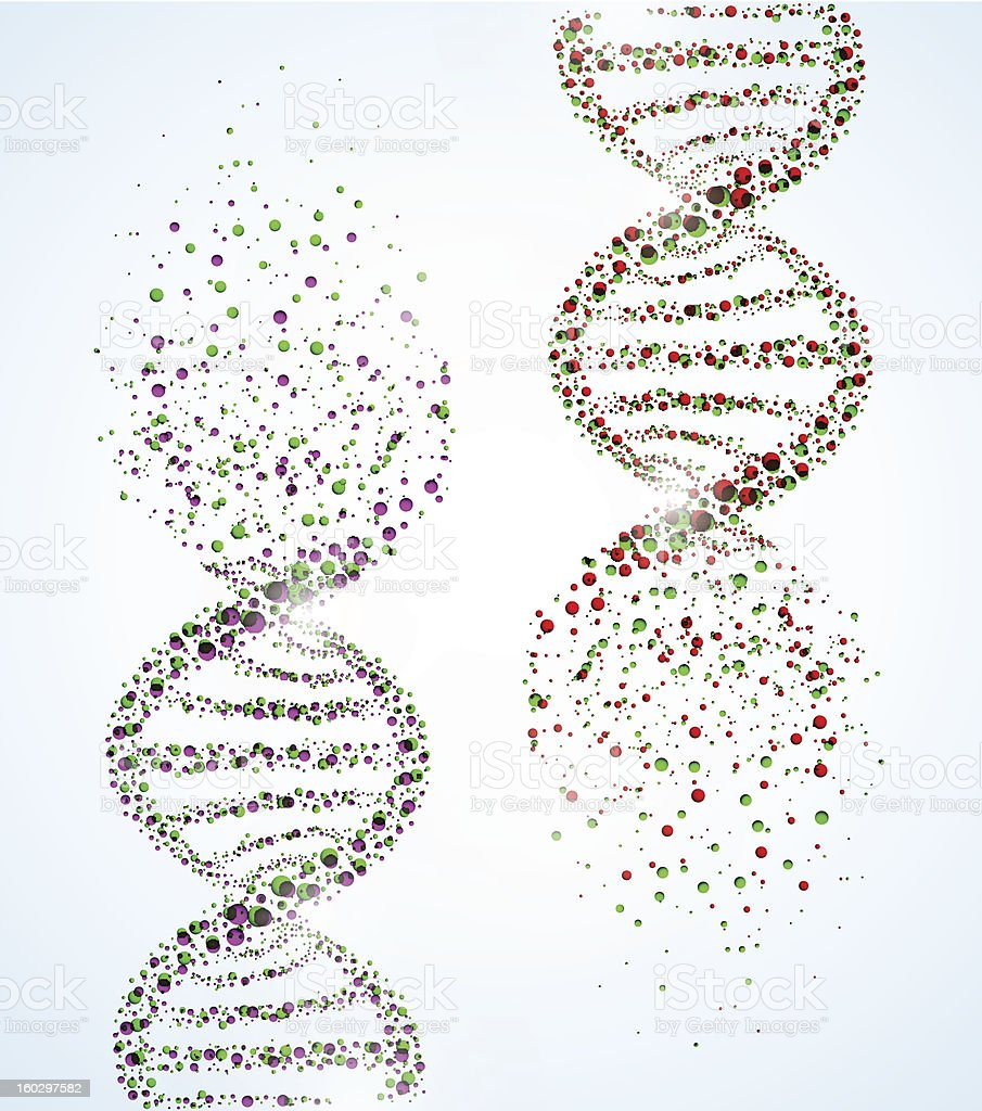 DNA molecule vector art illustration