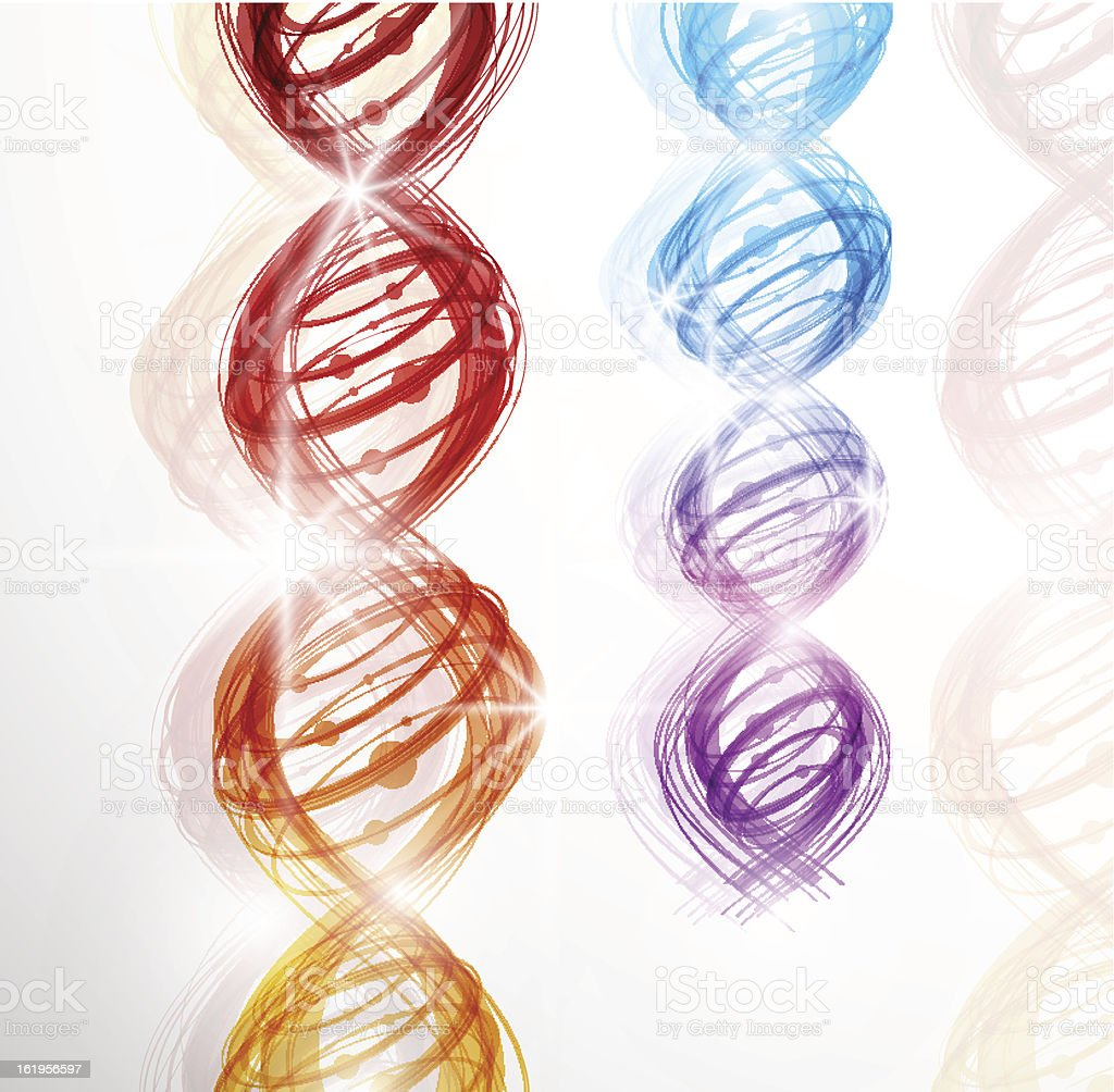 DNA molecule royalty-free stock vector art