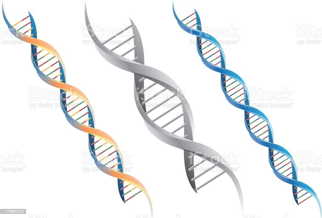 DNA molecule vector art illustration