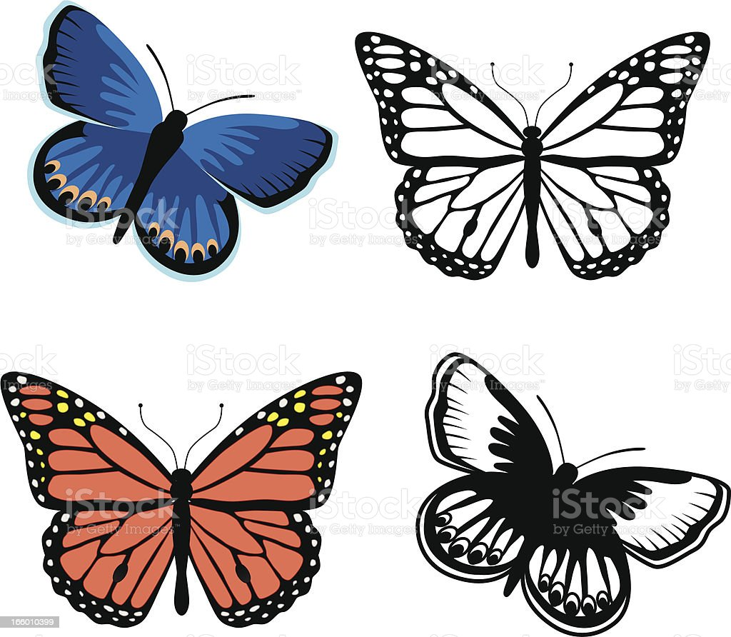 Monarch and Karner blue butterflies vector art illustration