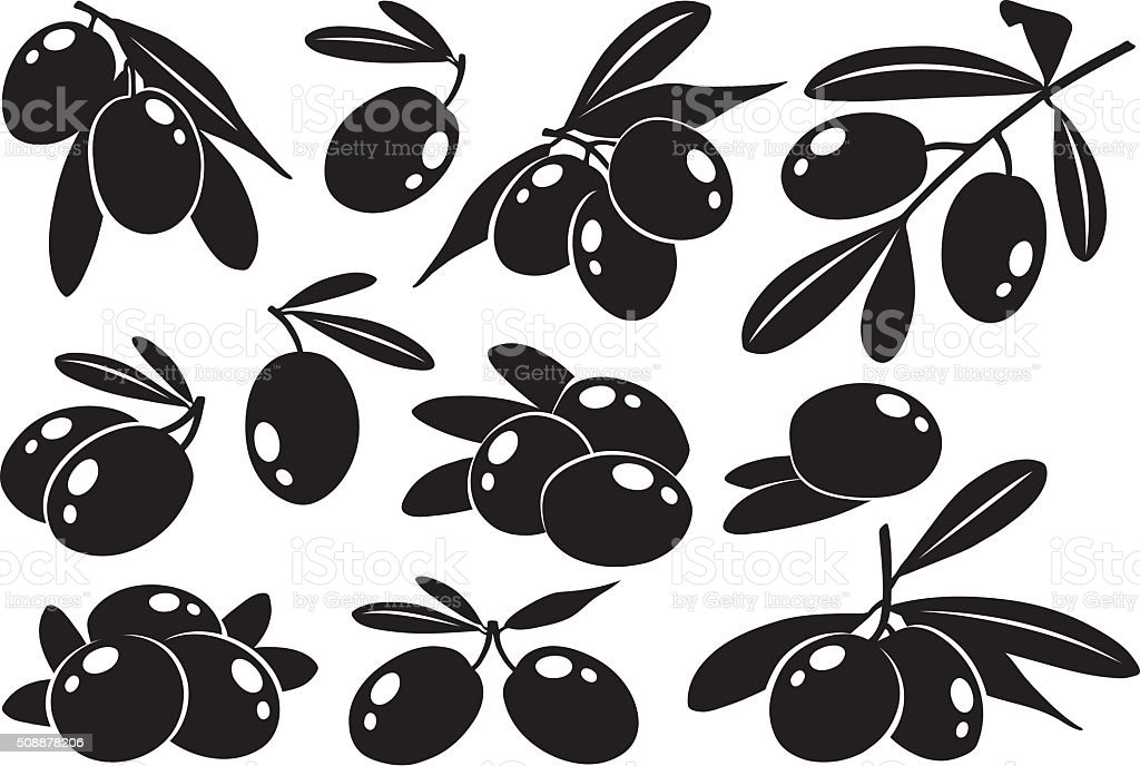 Monochrome olives, collection of vector illustrations vector art illustration