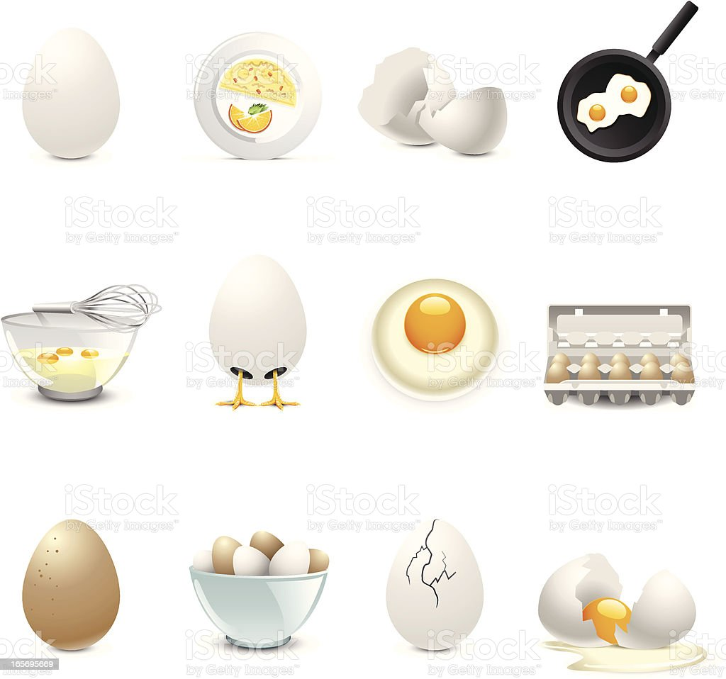 Montage of egg related illustrations vector art illustration