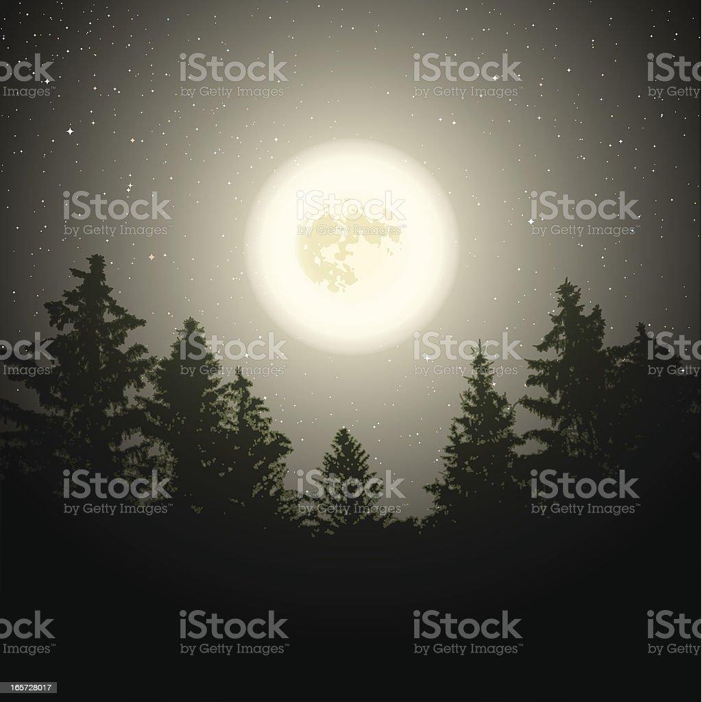 Moon over trees vector art illustration