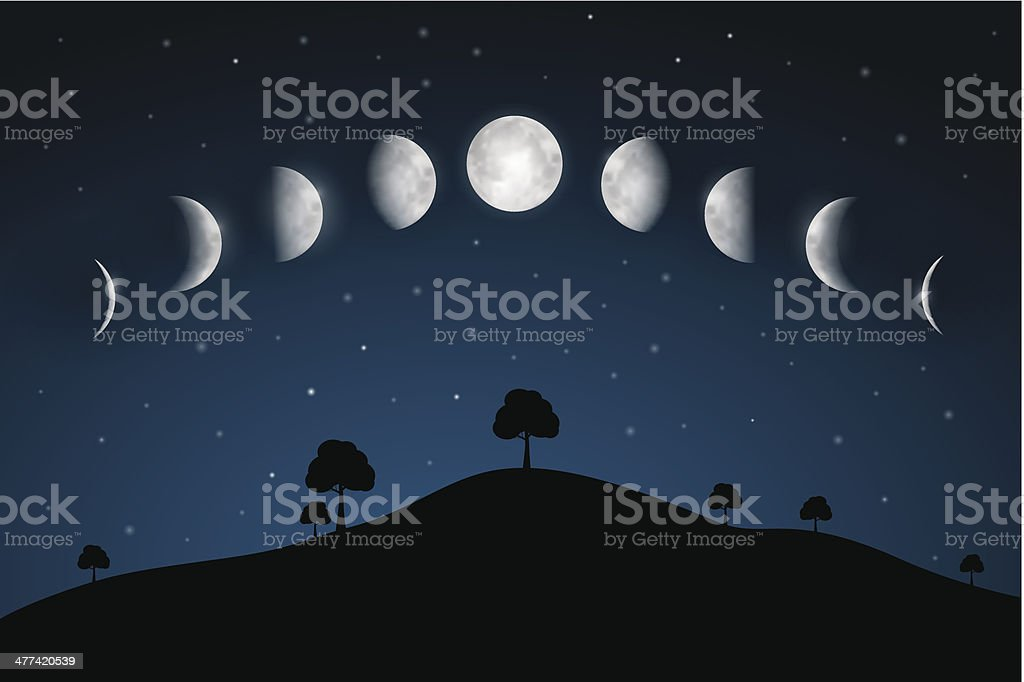 Moon Phases Above Night Landscape Illustration vector art illustration